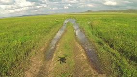 Aerial drone landing at the grass road in steppe of Kazakhstan stock footage