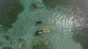Aerial drone of people snorkeling stock video