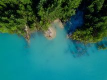Aerial drone photo of tree crones growing in tourquoise water, Russia stock images