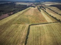 Aerial Drone Photo of Hay Rolls in the Wheat Field, Surrounded with Forests - Sunny Summer Day, Vintage Look Edit stock photos