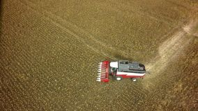 Aerial drone shot of a combine harvester working in a field. Tractors and farm machines harvesting corn in Autumn royalty free stock photo