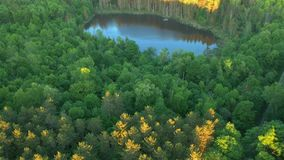Aerial Drone shot of forests and pond in Upstate New York. Slow vertical pan revealing the area stock footage