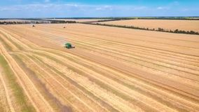 Aerial drone shot of a three combines harvesters working day in big a field. FHD stock video