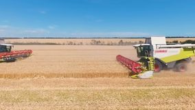 Aerial drone shot of a two combines harvesters working day in big a field. FHD. Aerial drone shot of a modern two combines harvesters working day in a big wheat stock video footage