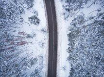 Aerial drone top view of asphalt road without cars among winter forest in snow, nature travel and transportation concept royalty free stock photos