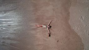 Aerial top view of happy woman and dog on the sandy beach stock footage