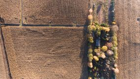 Aerial drone view from above of corn field after harvest Royalty Free Stock Images