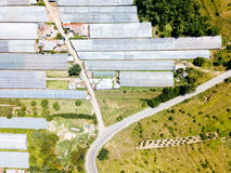 Aerial Drone View Of Agricultural Vegetables Fields And Greenhouses Stock Photos