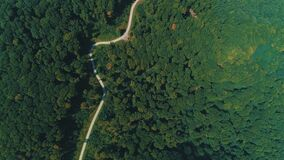 Aerial drone view of big green dense forest, looking like green desert with cloud shades moving.