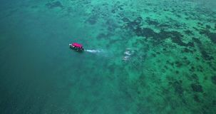 Aerial drone view of boat pulling people in the Caribbean island of Bocas del Toro in Panama. Flying over a boat pulling people in Bocas del Toro, Panama stock video footage