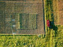 Aerial view of amid fields with red car on it. Aerial drone view of car on country road with agriculture crop field on sides. The car is parked in the field Royalty Free Stock Photography