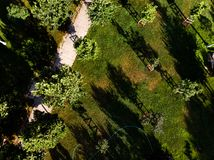 Aerial Drone View of City Garden with Trees and Walking Way Stock Photography