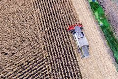 Aerial drone view on corn harvesting. stock images