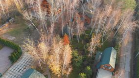 Aerial drone view on countryside rural wooden log house between autumn birch tree forest with green grass lawn. Sauna stock footage