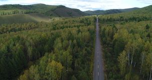 Aerial drone view:flying above from trail through autumn forests landscape stock footage