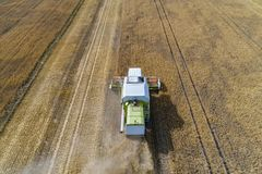 Aerial drone view of harvester combine working on field. Stock Photography