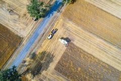 Aerial drone view of harvester combine working on field. Stock Images