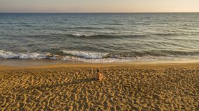 Aerial drone view of a lone man relaxing on a quiet beach just before sunset. stock photos