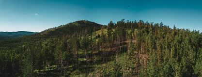 Aerial drone view of mountain peak with forest on the top, Russia stock photography