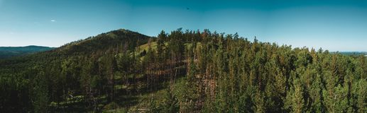 Aerial drone view of mountain peak with forest on the top, Russia royalty free stock images