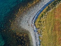Aerial drone view of nature coastline with herd of goats Royalty Free Stock Image