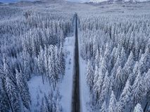 Aerial drone view of road in idyllic winter landscape. Street running through the nature from a birds eye view. stock photography