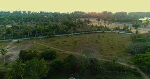 Aerial view of road on tropical island during sunset. Aerial drone view of road on tropical island during sunset stock footage