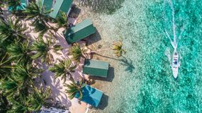 Aerial drone view of Tobacco Caye small Caribbean island in Belize Barrier Reef. Aerial drone view of Tobacco Caye small Caribbean island with palm trees and royalty free stock photos
