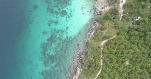 Aerial view of palm trees and sea with boats. Aerial drone view of tropical landscape with palm trees and sea with boats stock video footage