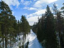 Aerial drone view of a winter road landscape. Snow covered forest and road from the top. Sunrise in nature from a birds eye view Stock Photography