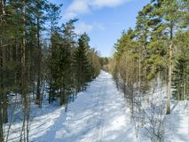 Aerial drone view of a winter road landscape. Snow covered forest and road from the top. Sunrise in nature from a birds eye view Royalty Free Stock Image