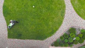 Aerial drone view of worker mowing green grass lawn with motorized or electric mower machine tool . Round shaped lawn stock footage
