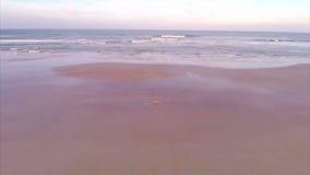 Aerial dusk beach video stock video footage