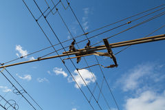 Aerial Electrical Line of the Trains Stock Photo