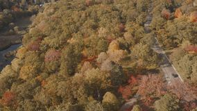 Aerial establishing shot of a road surrounded by a fall forest.