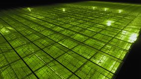 Aerial - Exterior shot of greenhouse with LED lights on for growing plants. stock video