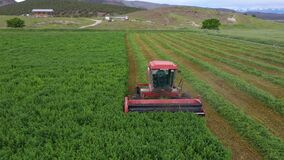 Aerial Farm field swather cutting alfalfa hay pull fast motion 4K
