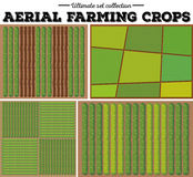Aerial farming crops pattern Royalty Free Stock Photos