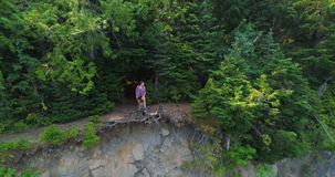 Female hiker standing on cliff in forest 4k. Aerial of female hiker standing on cliff in forest 4k stock footage