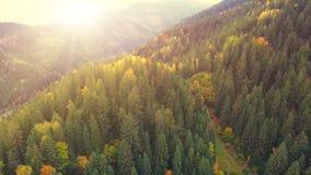 Aerial Flight in Carpathian mountains. 4k, 30fps stock video