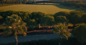 Aerial flight, low altitude, over hills and polo fields at sunset stock footage