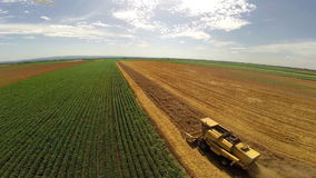 Aerial flight over combine harvesting the wheat rows stock video