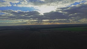 AERIAL: The flight over a field of young wheat at sunset stock video footage