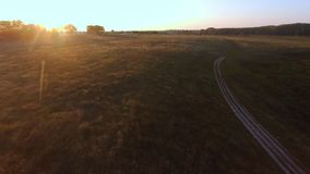 Aerial Flight over the road between fields. Autumn colors. stock video footage
