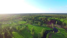Aerial Flight Over summer forest and rivers at sunset. stock video