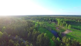 Aerial flight over summer forest and rivers at sunset. stock video footage