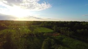 Aerial Flight Over summer forest and rivers at sunset. stock footage