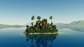 Aerial fly shot of beautiful island with a palm tree at ocean stock video footage