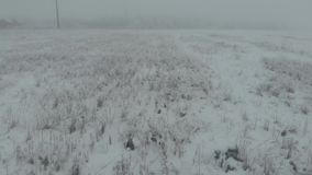 Aerial fly view above winter snowy field at foggy day, 4k, low view stock video