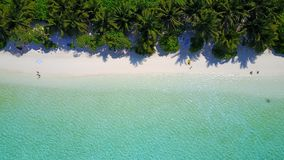 P01081 Aerial flying drone view of Maldives white sandy beach on sunny tropical paradise island with aqua blue sky sea Royalty Free Stock Image